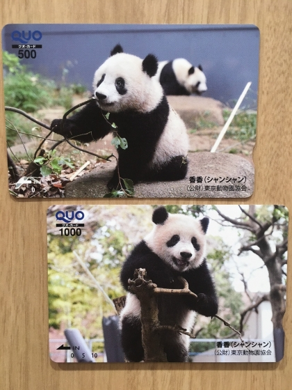 【チケットポート】香香(シャンシャン) QUOカード